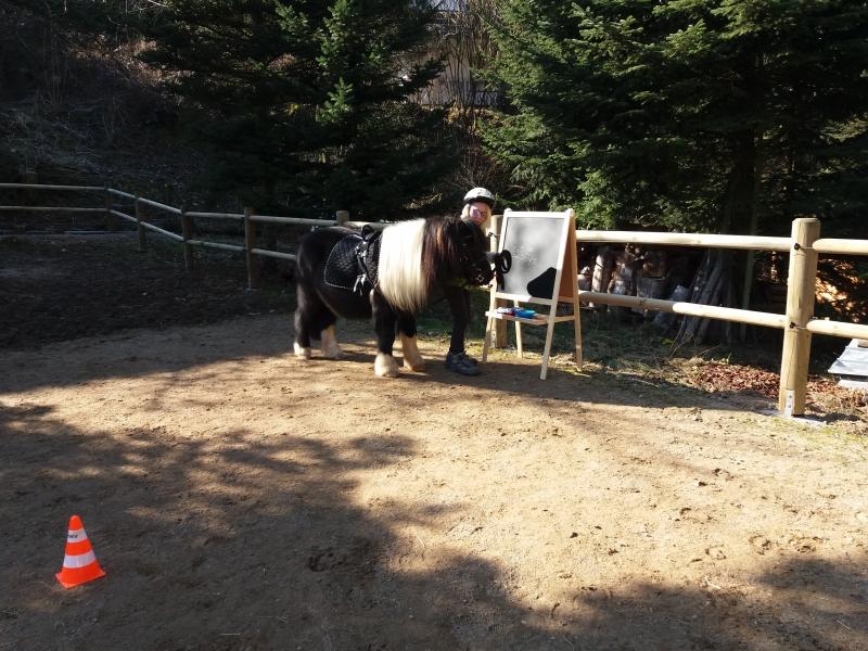 Pferde starkes Lernen 2017 055