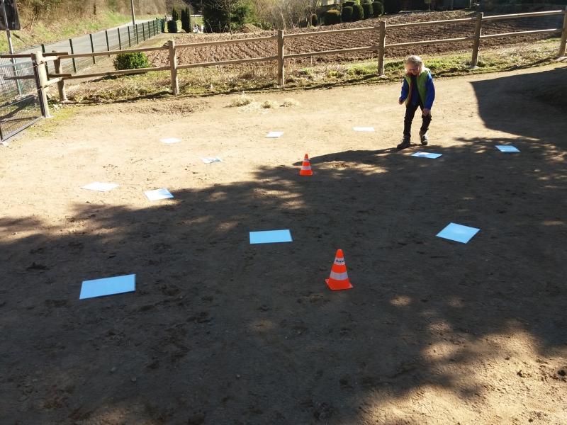 Pferde starkes Lernen 2017 075