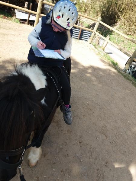 Pferde starkes Lernen 2017 080