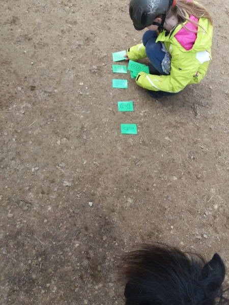 Pferde starkes Lernen 2017 097