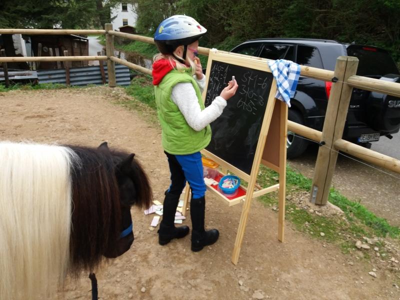 Pferde starkes Lernen 2017 108