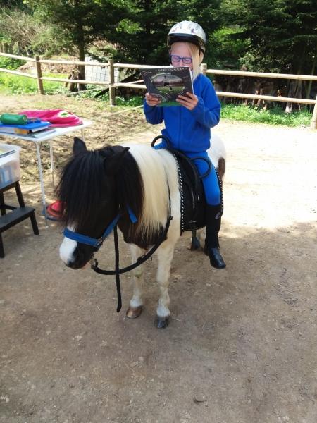 Pferde starkes Lernen 2017 133