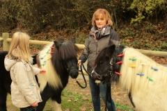Pferde starkes Lernen mit Amy 13.11.2016 von Gerd (18.1)
