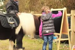Pferde starkes Lernen mit Ida 12.11 (56.3)