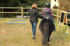 Pferde starkes Lernen mit Ida 12.11 (90.1)